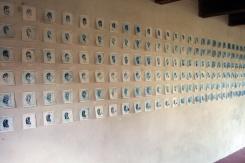 Shell, 2013. Installatie van 240 droge naald etsen van 10 x 10 cm.