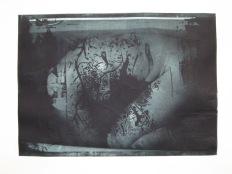 Fishtank, 2011. Hoogdruk, fotopolymeer op papier. 30 x 40 cm.