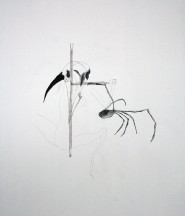 Scarecrow, 2010. Mixed media op multiplex. 55 x 80 cm.